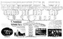 Stammbaum, Pinnwand,